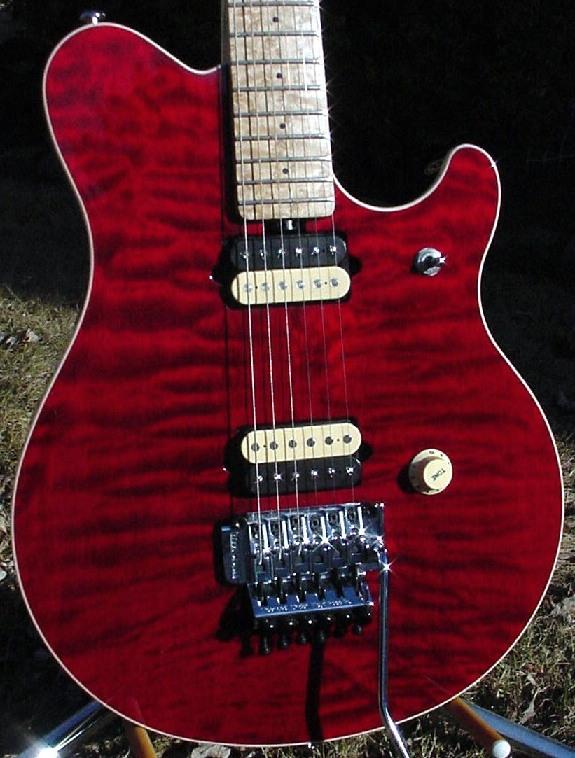 ernie ball musicman guitar serial number database